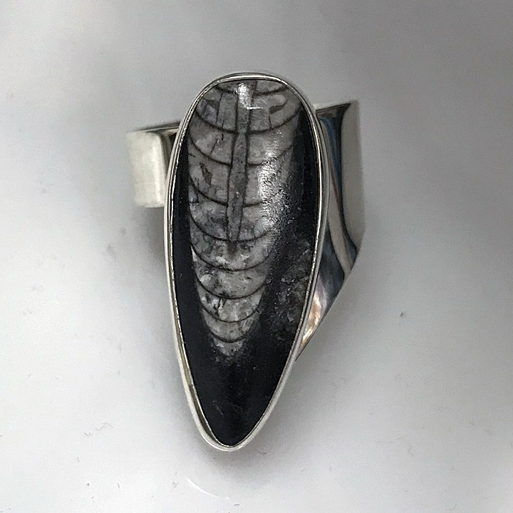 Orthoceras Fossil Sexy Ring