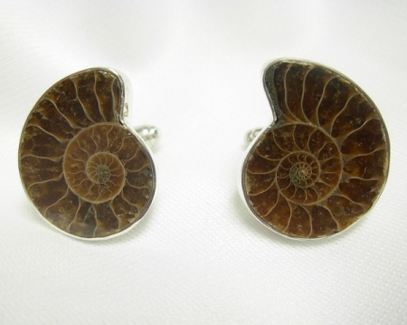 Ammonite Cufflinks