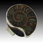 Ammonoid Fossil Bold Ring