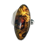 Freeform Baltic Amber Modernist Ring