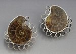 Ammonite Fossil Post Earrings (AME-2)